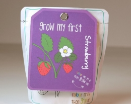 regalo bambino aria aperta, regalo educativo per bimbi, piantina da piantare per bambini