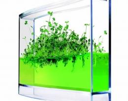 serra per la casa, regali per chi ama il giardinaggio, idee regalo pollice verde