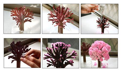 albero magico ciliegio in fiore, regali particolari, regali originali