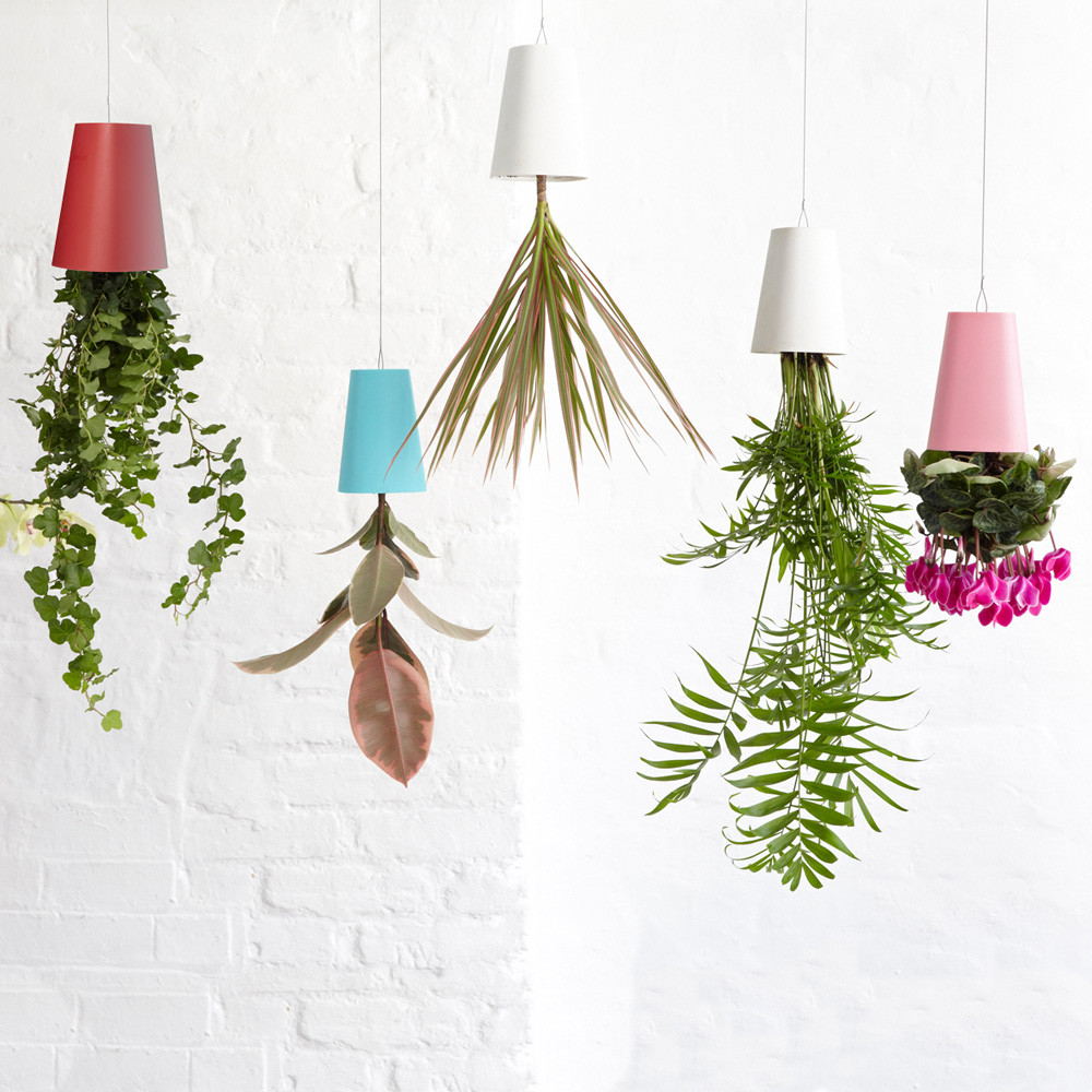 regalo originale, vaso sottosopra, regalo per chi ama le piante