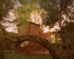 regali per lui casa sull'albero, soggiorno casa sull'albero, regalo introvabile per lui